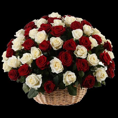 Фото товара 101 красно-белая роза в корзине в Мариуполе