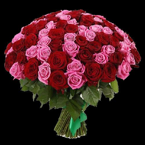 Фото товара 101 красно-розовая роза в Мариуполе