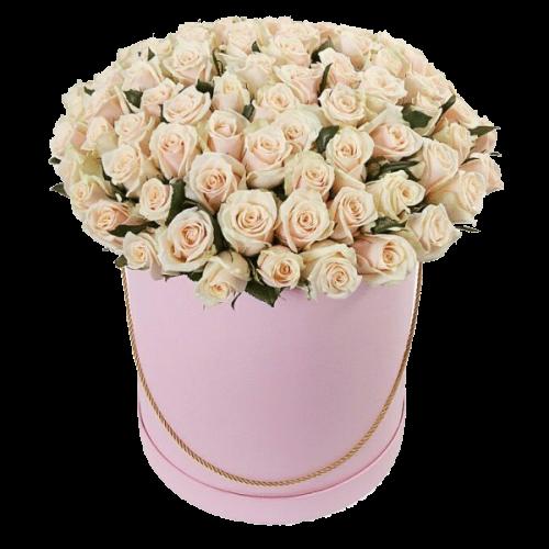 Фото товара 101 кремовая роза в шляпной коробке в Мариуполе