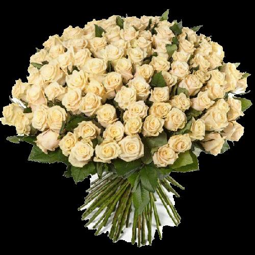 Фото товара 101 кремовая роза в Мариуполе