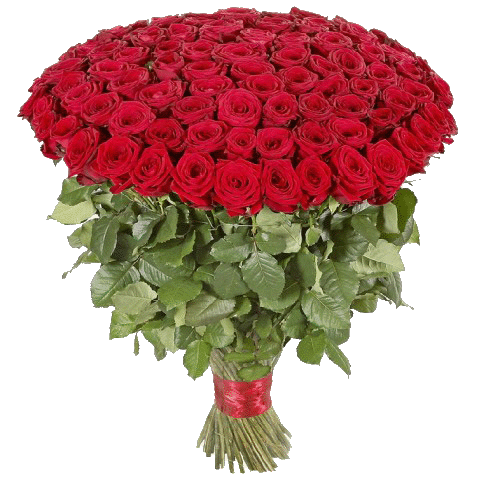 Фото товара 101 красная роза в Мариуполе