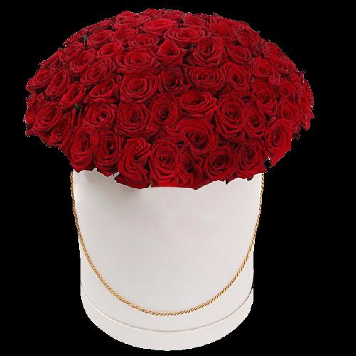 Фото товара 101 красная роза в шляпной коробке в Мариуполе