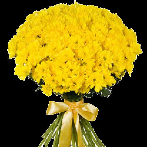 Фото товара 11 желтых кустовых хризантем в Мариуполе