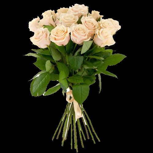 Фото товара 15 кремовых роз в Мариуполе