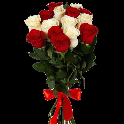 Фото товара 15 красно-белых роз в Мариуполе