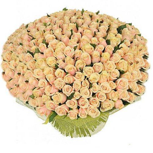 Фото товара 201 кремовая роза в Мариуполе