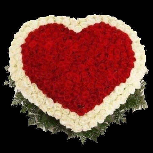 Фото товара 201 роза сердцем в Мариуполе