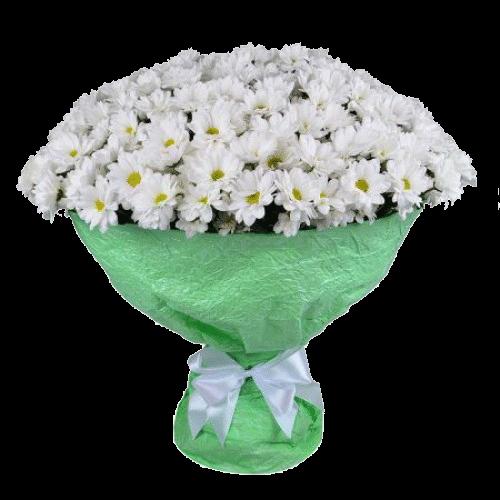 Фото товара 21 белая кустовая хризантема в Мариуполе