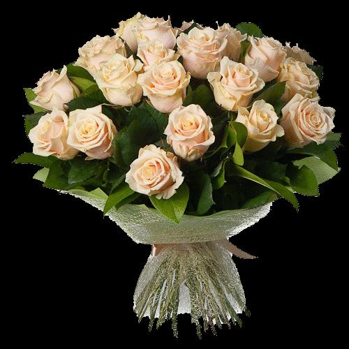 Фото товара 21 кремовая роза в Мариуполе
