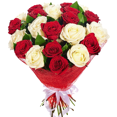 Фото товара 21 красно-белая роза в Мариуполе