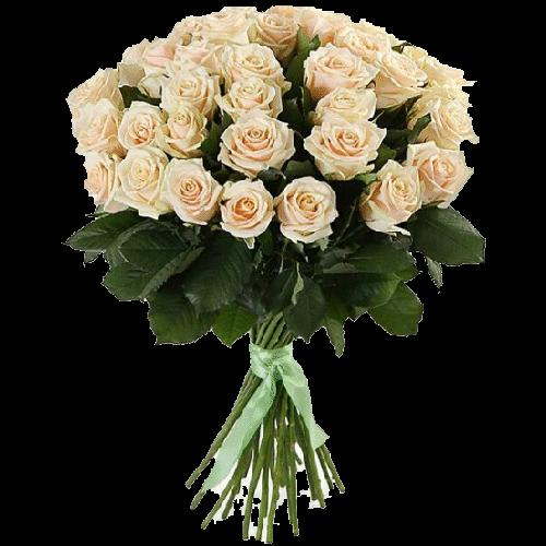 Фото товара 33 кремовые розы в Мариуполе