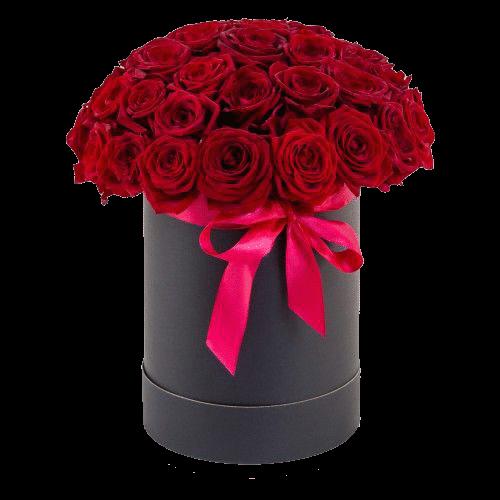 Фото товара 33 красные розы в шляпной коробке в Мариуполе
