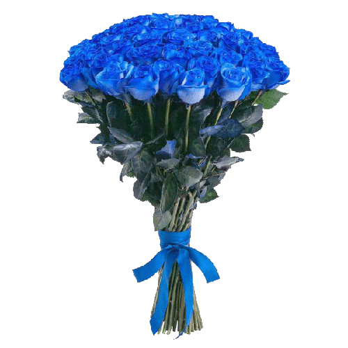 Фото товара 51 синяя роза (крашеная) в Мариуполе