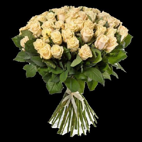 Фото товара 51 кремовая роза в Мариуполе