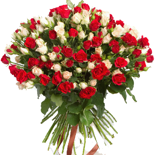 Фото товара 51 кустовая красно-белая роза в Мариуполе
