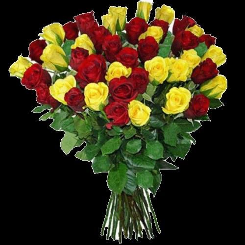 Фото товара 51 красно-желтая роза в Мариуполе
