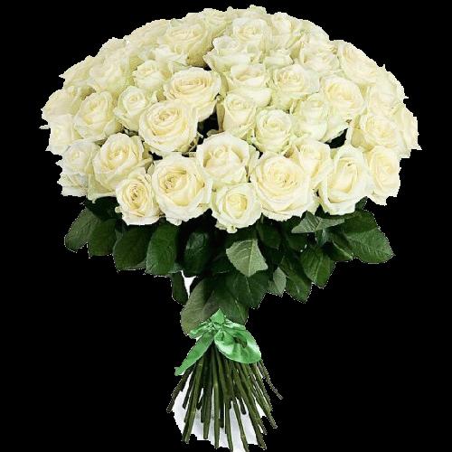 Фото товара 51 белая роза в Мариуполе