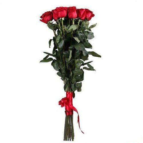 Фото товара 11 метровых роз в Мариуполе