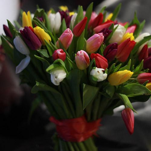 фото букет тюльпанов микс